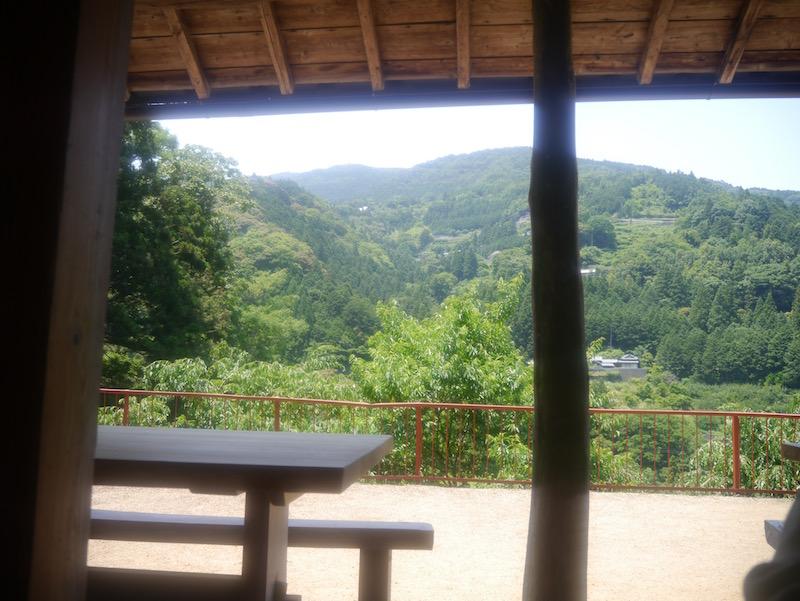縁側から眺める景色。